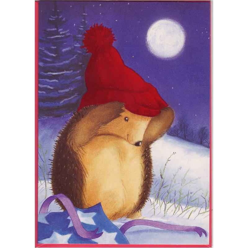 Faltkarte: Der kleine Igel  - Fühl die rote Mütze!